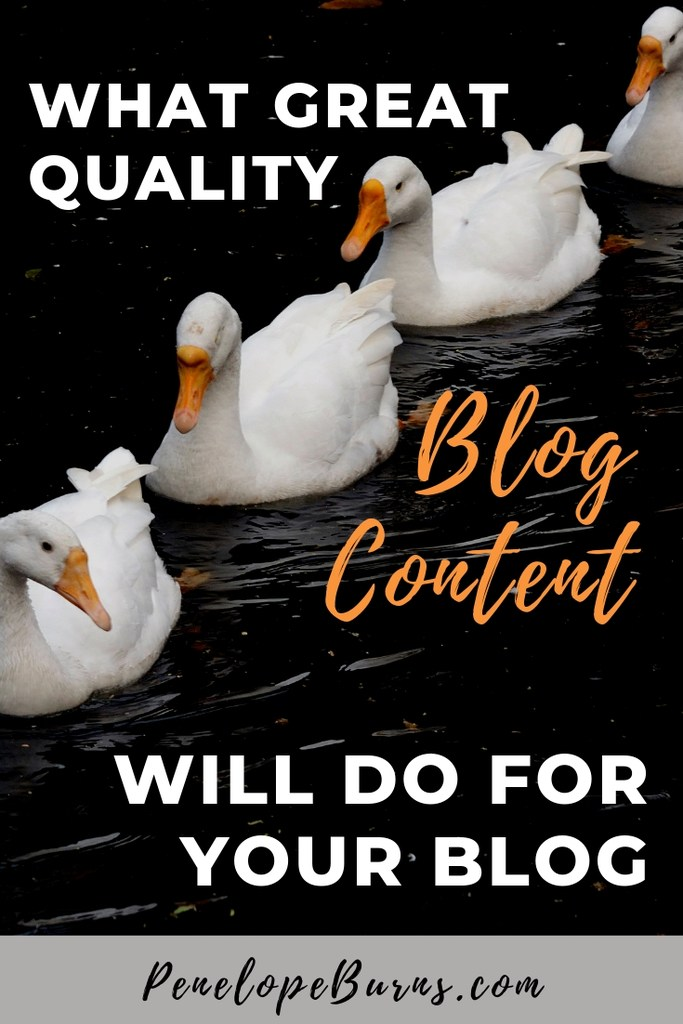 A line of white ducks looking for How To Get Quality Blog Content P2